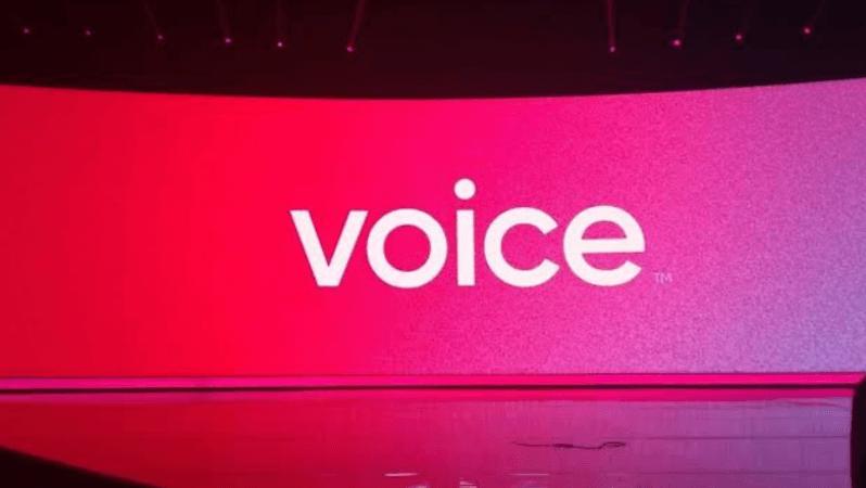 Voice, Bekleneni Karşılayabilecek Mi?