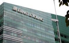 Ernst & Young Sake İçin Blockchain Kullanacak