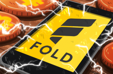 Fold Projesi Nedir