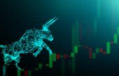 Ortaya Çıkan Yeni Bir Veri Boğa Piyasasını İşaret Ediyor