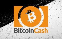 Bitcoin Cash Yarılanmasından Sonra Neler Oldu?