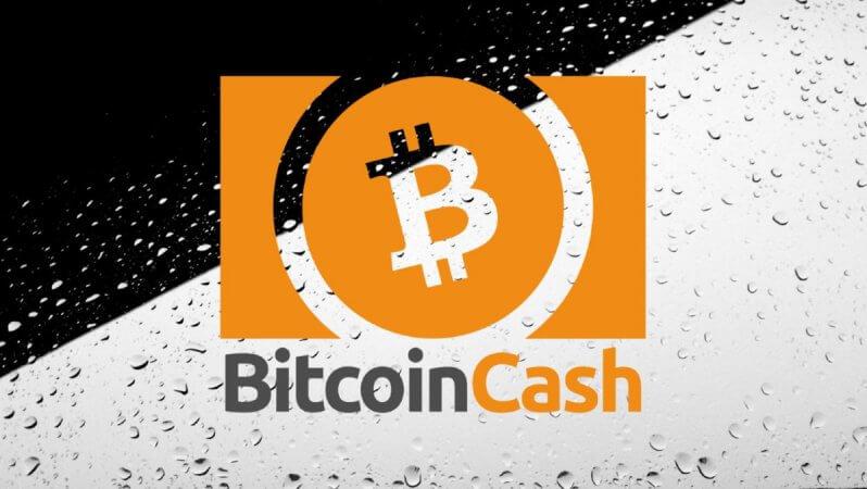 Bitcoin Cash Yarılanmasından Sonra Neler Oldu? › Bitcoin Haberleri
