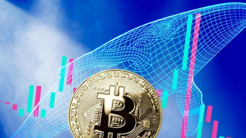 Bitcoin'in 7.200 Dolarlık Alan Girme Olasılığı Ne?