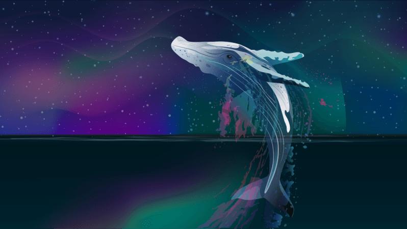 Bitcoin Balinalarının Sayısı 2017'deki Rakamlara Ulaşıyor