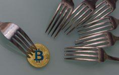 Bitcoin Fork'ları BTC'den Daha İyi Performans Mı Sergiliyor?