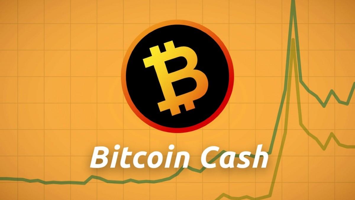 Bitcoin Cash ile İlgili Ciddi Eleştiriler