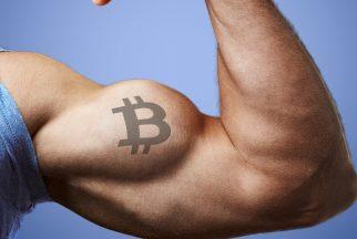 BTC Fiyatı Düşse de Bitcoin Ağı Çok Sağlam!