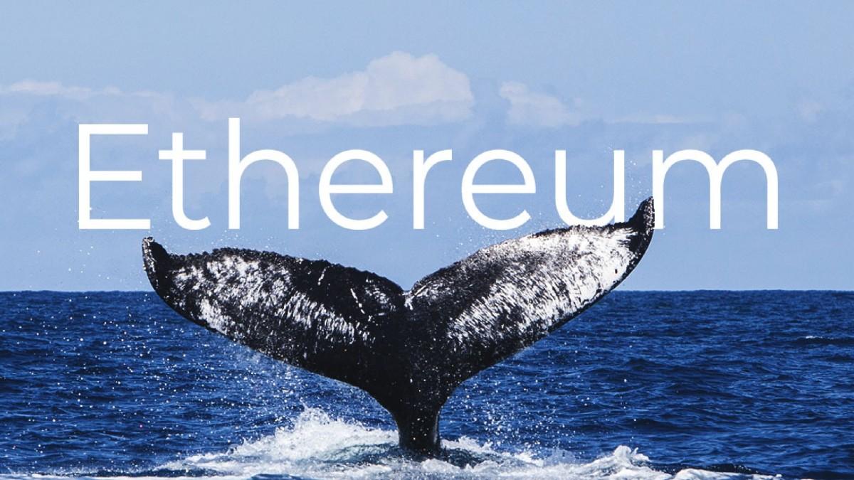 Ethereum Fiyatı: Balinalar ETH'a Güveniyor