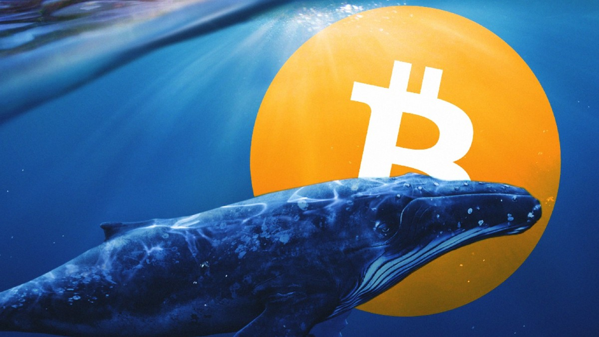 Bitcoin (BTC) Balinalarının Kimlere Satış Yaptığı Belli Oldu!